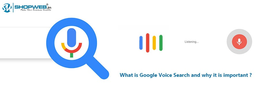 What Is Google Voice Search And Why It Is Important | Shopweb